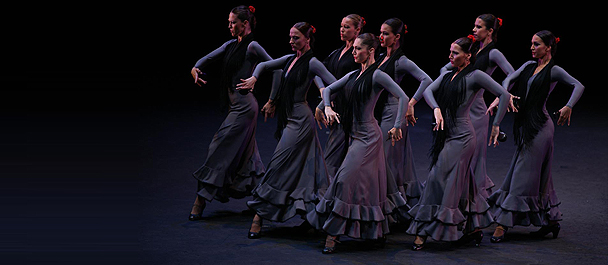 Bodas de Sangre y Suite Flamenca